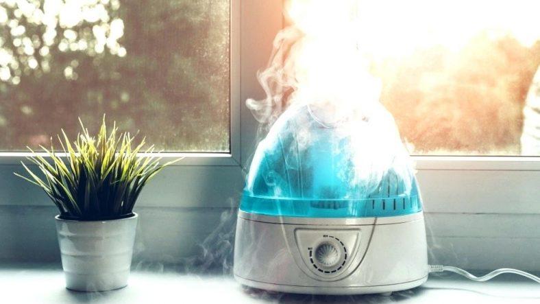 Humidifier vs Vaporizer; what should you choose?