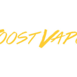 JOOST VAPOR-REVIEW