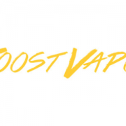 JOOST VAPOR-REVIEW